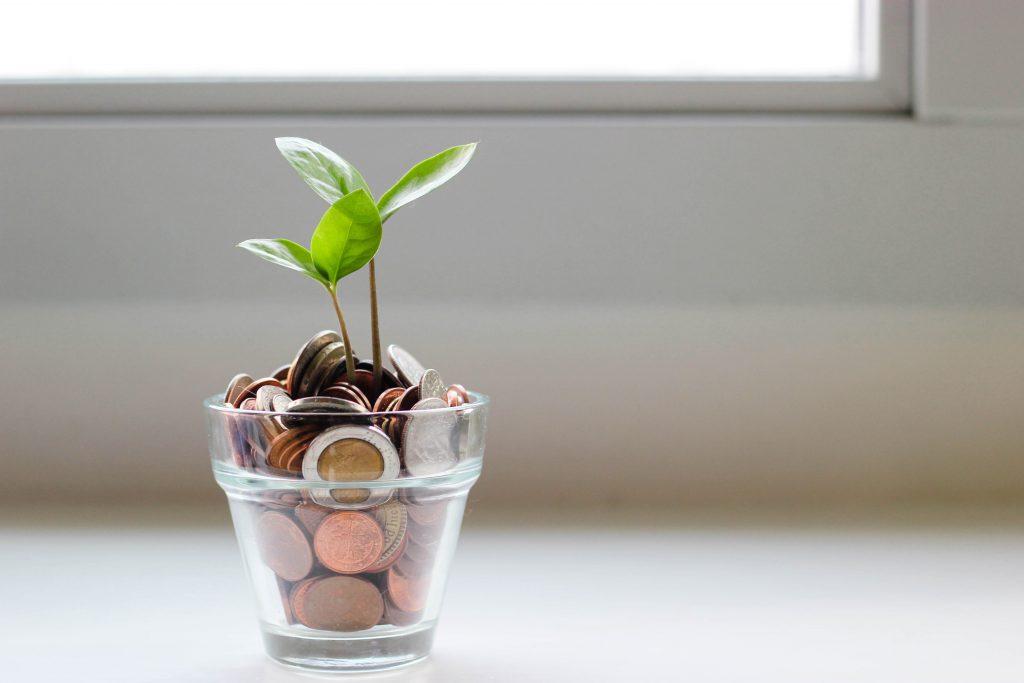 Optimizar los Costos de las Pruebas de Software
